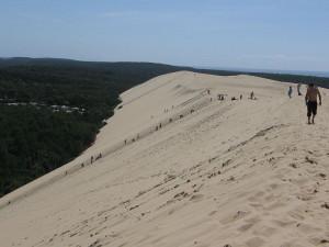 На гребне дюны
