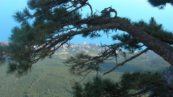 Вид с Ай-Петри, Крым