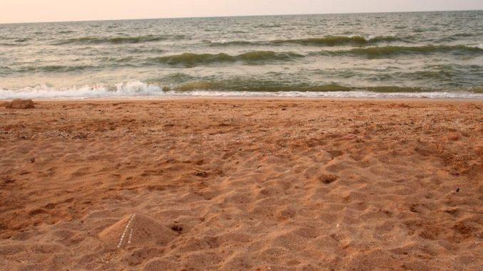 Должанская, пляж