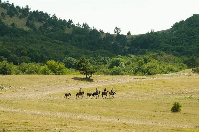 Катание на лошадях в Крыму, плато Ай-Петри