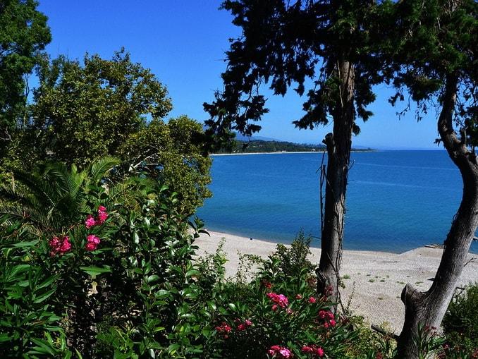 Абхазия в мае: цветы и море