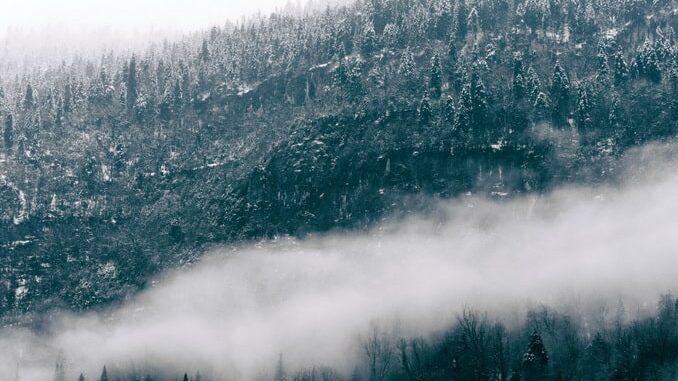 Абхазия, зима